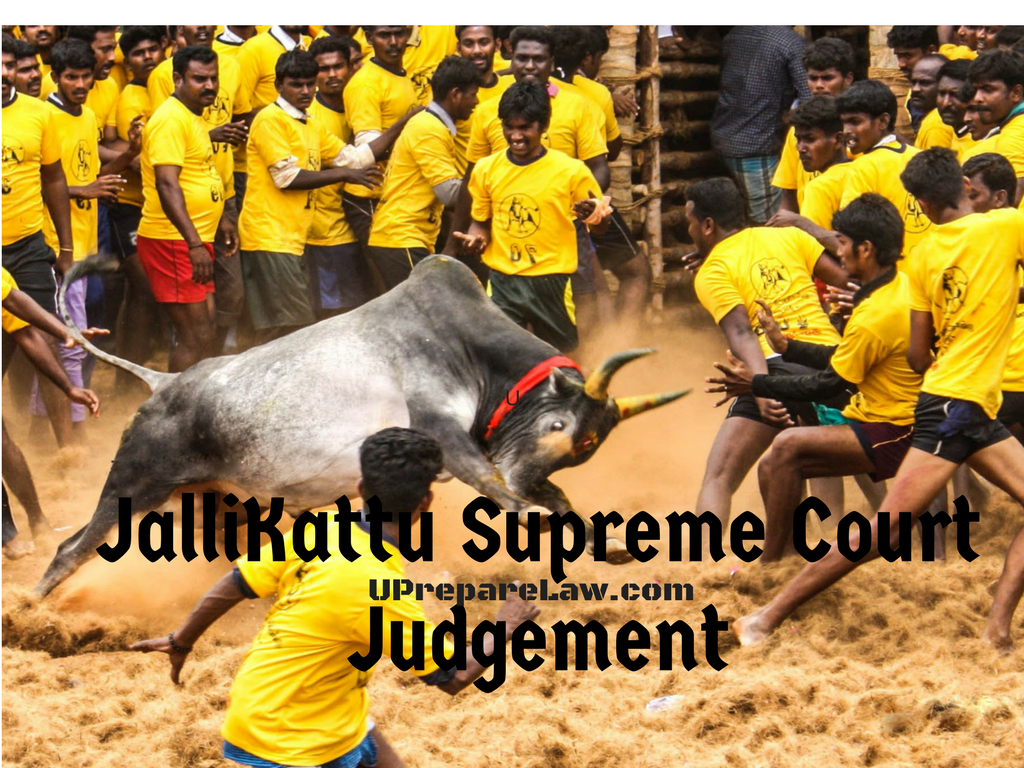 JalliKattu Supreme Court Judgement